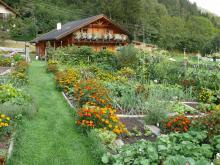 Garten & Ferienhaus